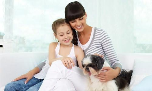 10 Dog Breeds for Children