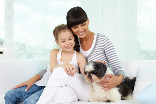 10 Best Dog Breeds for Children