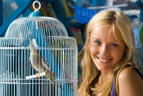 Best Pet Birds for Every Woman