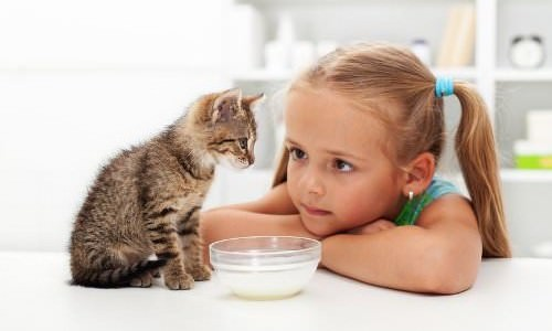 10 Table Foods Pets Shouldn T Eat