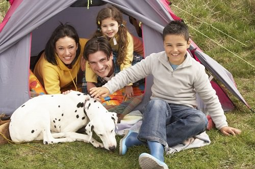 Tips for Camping with Your Pet