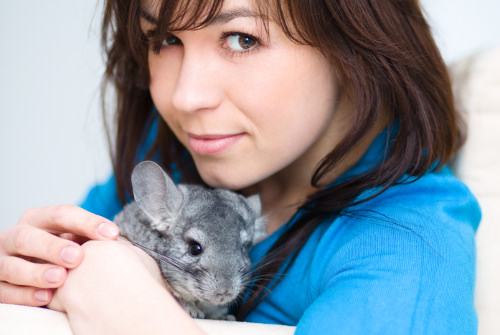 Benefits of Owning Chinchillas
