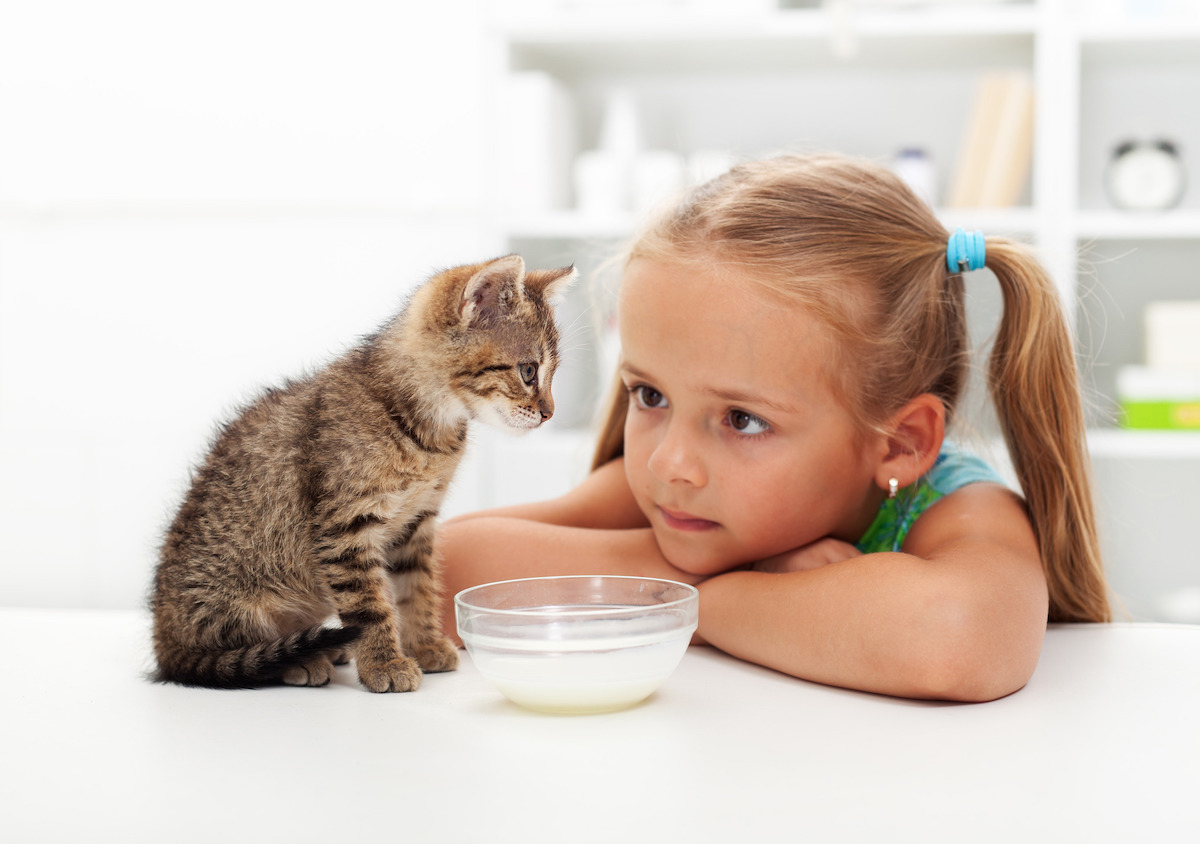 10 Table Foods Pets Shouldn't Eat