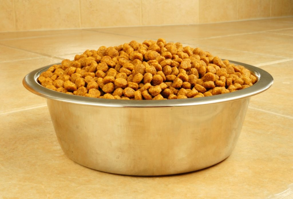 Things to Consider When Choosing Dog Food Check the ingredients list